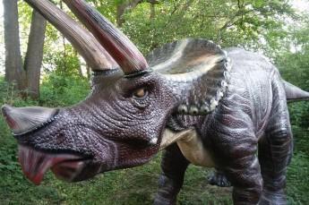 Ustroń Atrakcja Park tematyczny Park Dinozaurów